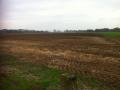 Maisland ligt klaar…. Of toch maar gras inzaaien met derogatie 80-20? In beide gevallen moet er op deze zandgrond goed bemest worden!