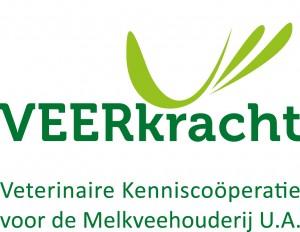 Veerkracht-logo-kleur